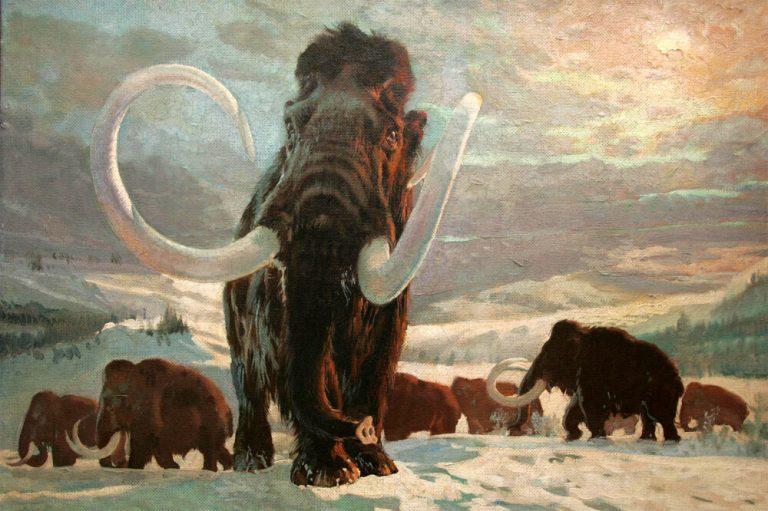 Beethovenova Alej Piešťany - mamut